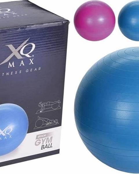 XQ MAX Gymnastický míč XQ MAX YOGA BALL 55 cm - Černá