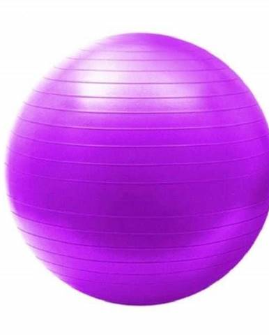 Gymnastický míč HMS YB02 65 cm fialový