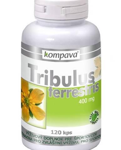 Tribulus terrestris - Kompava 120 kaps