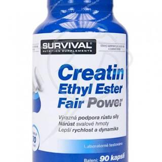 Creatin Ethyl Ester Fair Power 90kps.