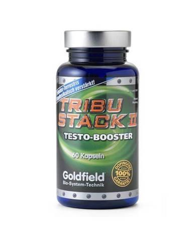 Goldfield Turbo Tribu-Stack II 60 tabliet